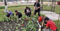 Власти Тамбова предлагают не финансировать из бюджета частичное трудоустройство школьников