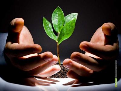 Молодым предпринимателям Тамбовщины помогут раскрутить бизнес