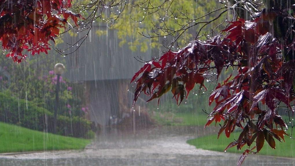 Экстренное предупреждение от МЧС: в Тамбовской области начнутся дожди, грозы и сильный ветер