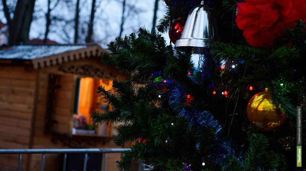 Более 200 тысяч россиян стали участниками новогодних мероприятий в Тамбовской области