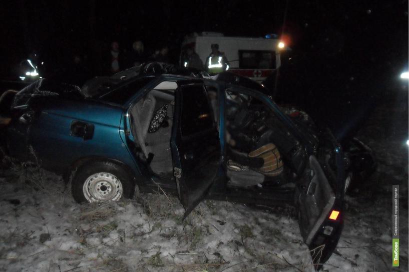 В Мичуринске автомобилист не пережил столкновения со световой опорой