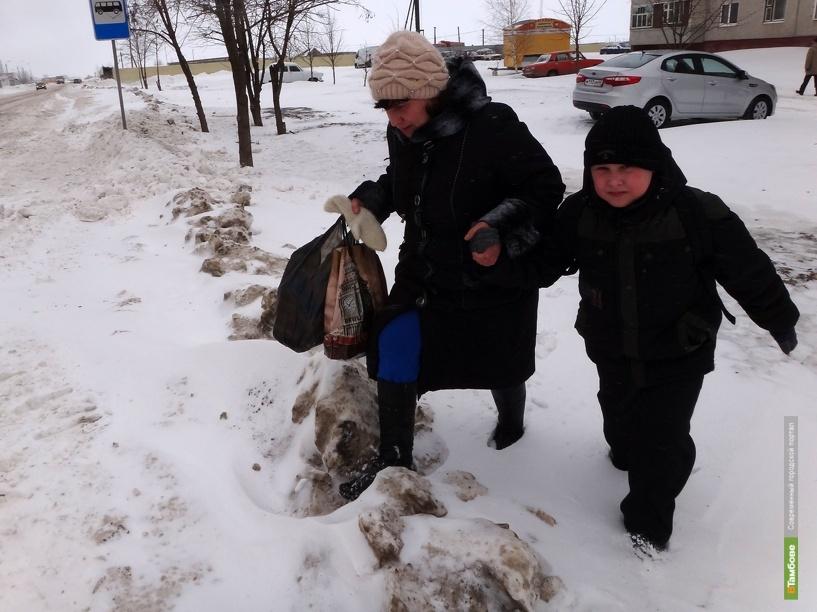Снежные заносы «сковали» север Тамбова