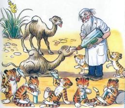 В тамбовском зоопарке родились верблюжата