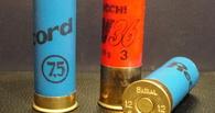 В регионе задержали двух мужчин за незаконное хранение оружия и боеприпасов