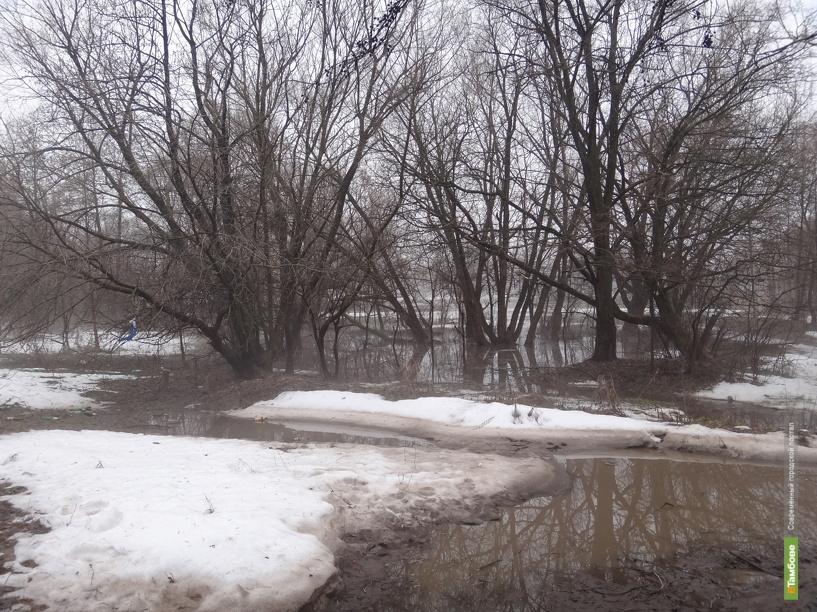 Из-за паводка в Тамбовской области приостановлена работа одной школы