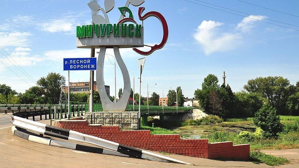Мичуринск стал лидером среди городов и районов Тамбовщины