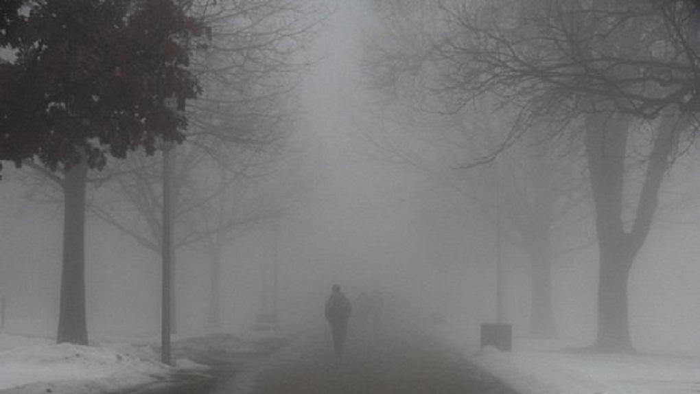 Туман и осадки: какая погода ожидает тамбовчан на этой неделе?