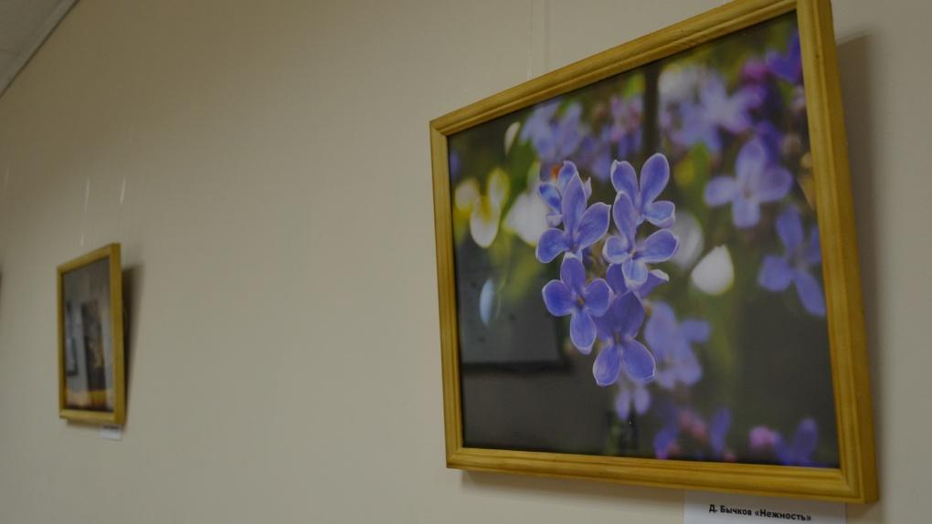 В Тамбовском филиале РАНХиГС открылась выставка фоторабот «Пять»