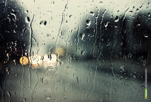 Дожди из Тамбова не уйдут до конца недели