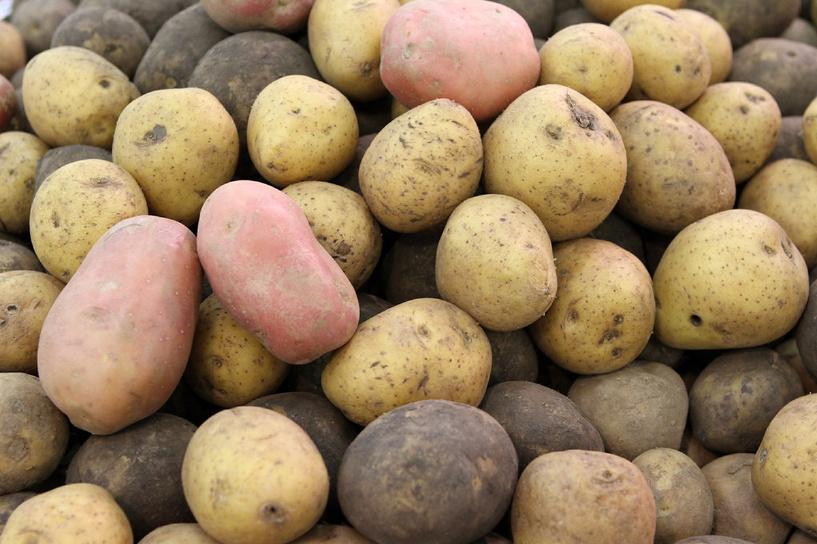 Список запрещенных продуктов поправили: теперь можно ввозить семенной картофель и БАДы