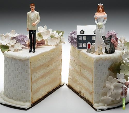 На каждую 1000 браков в Тамбове приходится 924 развода