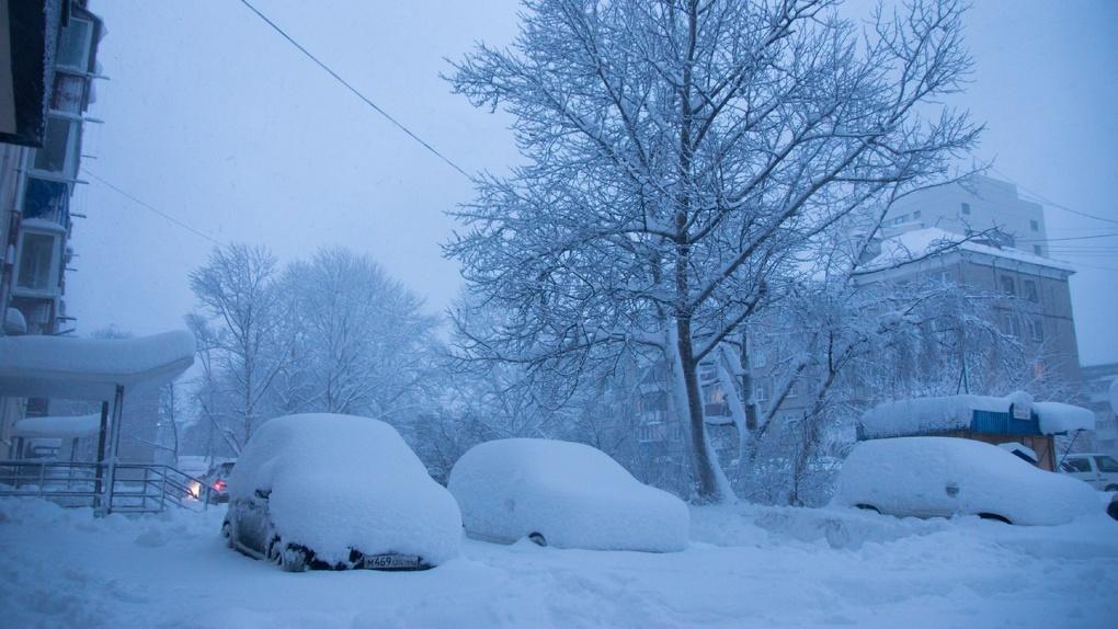 Снова метель: во вторник Тамбов засыплет снегом