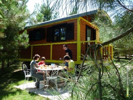 Французы построят на Тамбовщине гостевые домики