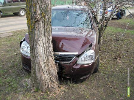 Дерево остановило тамбовского автомобилиста