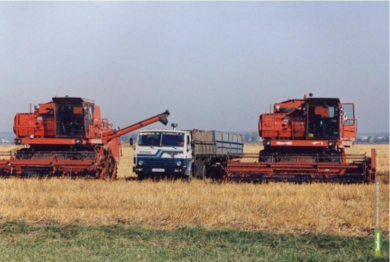 Тамбовские фермеры получат самые крупные субсидии в Черноземье
