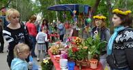 В Тамбове пройдет 9 городской фестиваль цветов