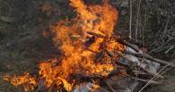 Тамбовские наркополицейские сожгли наркотики