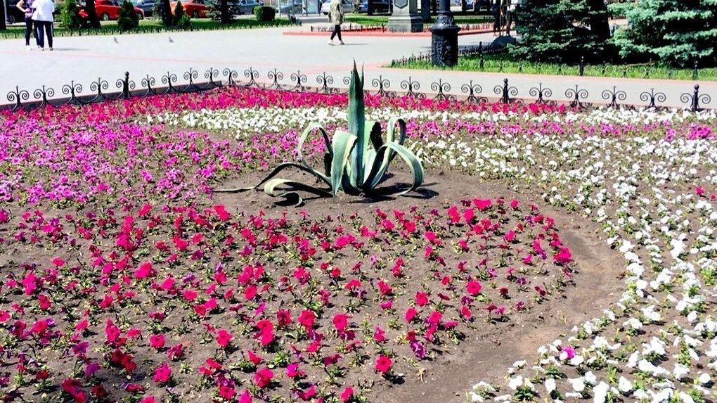 Цветы на севере города тамбов, букет невесты красноярск