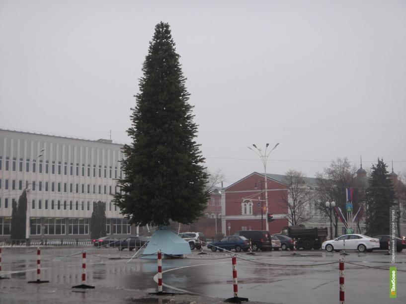 Школьники украсят главную елку Тамбова