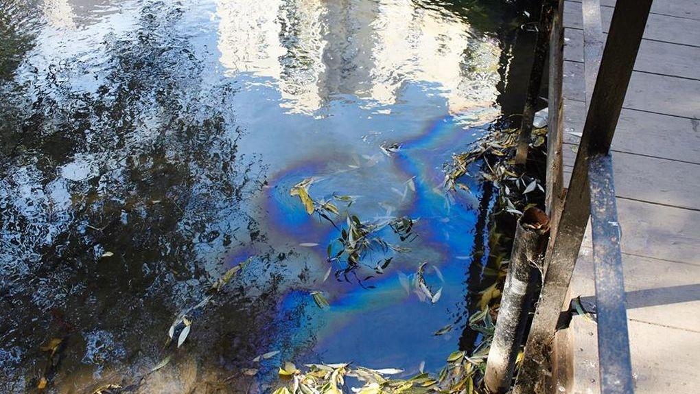 Река Студенец постоянно чем-то загрязняется: необходима инвентаризация коллекторов