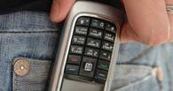 Полицейские поймали похитителя сотовых телефонов