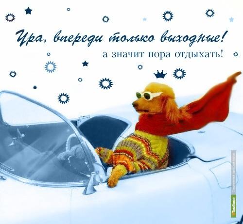 Выходные с ВТамбове.ру: тролль гнёт ель и пьёт чай