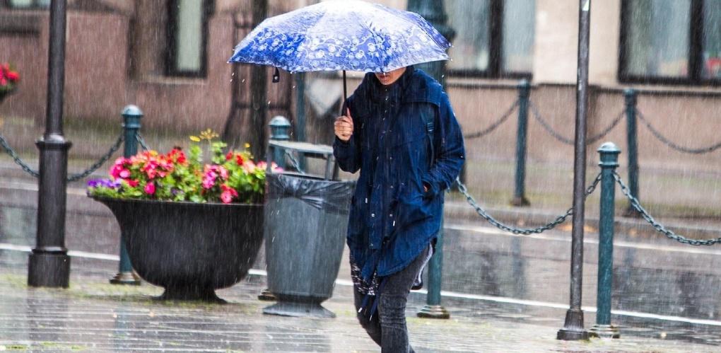 В Тамбове ожидается сильный ветер и дождь