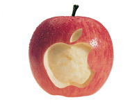 Apple решила зарегистрировать в России слово «Яблоко»