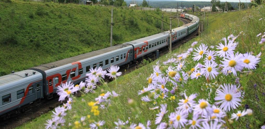 Тамбовчане приобрели почти 50 тысяч билетов на поезда дальнего следования по банковским картам