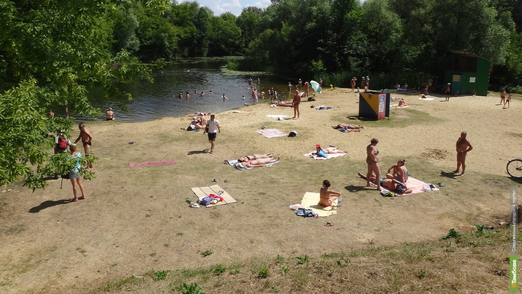 Два пляжа в Тамбовской области непригодны для купания