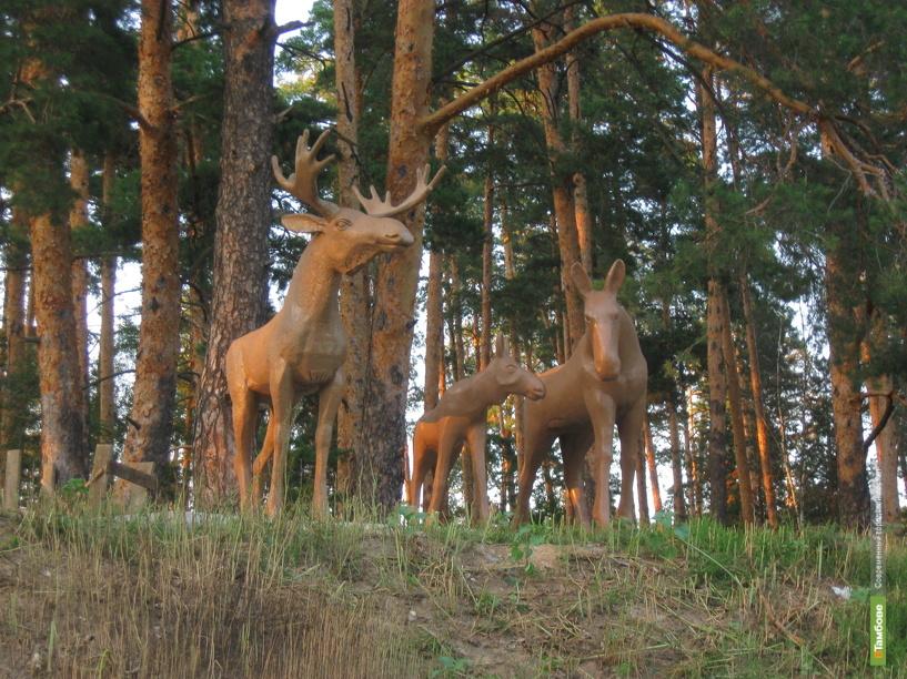 Тамбовский лось уступил место молодой семье