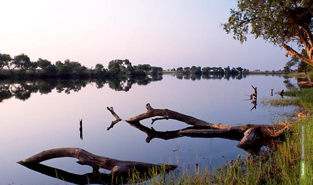 Тамбовский кругосветник искупался в реке Замбези