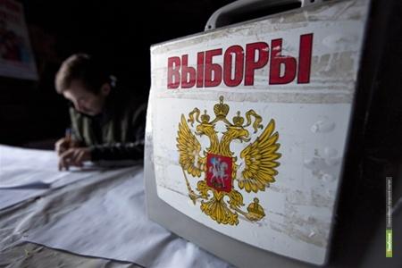 На муниципальных выборах в Тамбовской области задержали хулигана