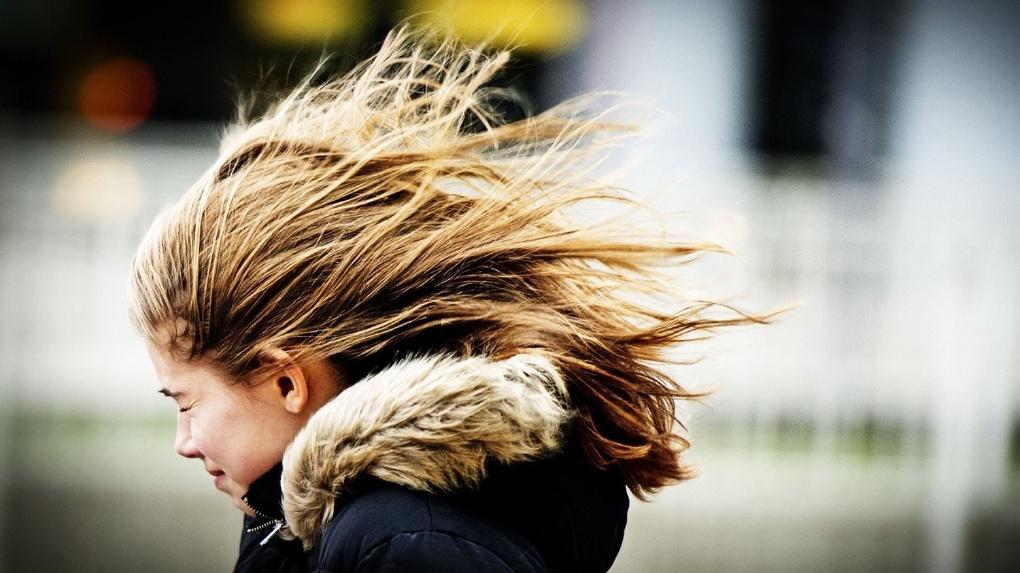 Будьте осторожны! В ближайшие часы в Тамбове ожидаются порывы ветра до 18 м/с