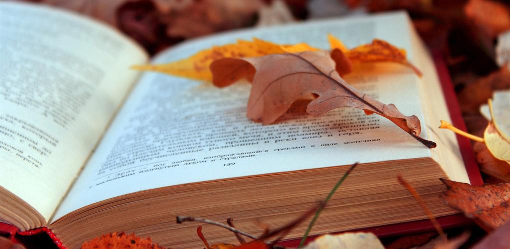 Фестиваль «Читаем вместе!» вошёл в сто лучших проектов в поддержку чтения в России