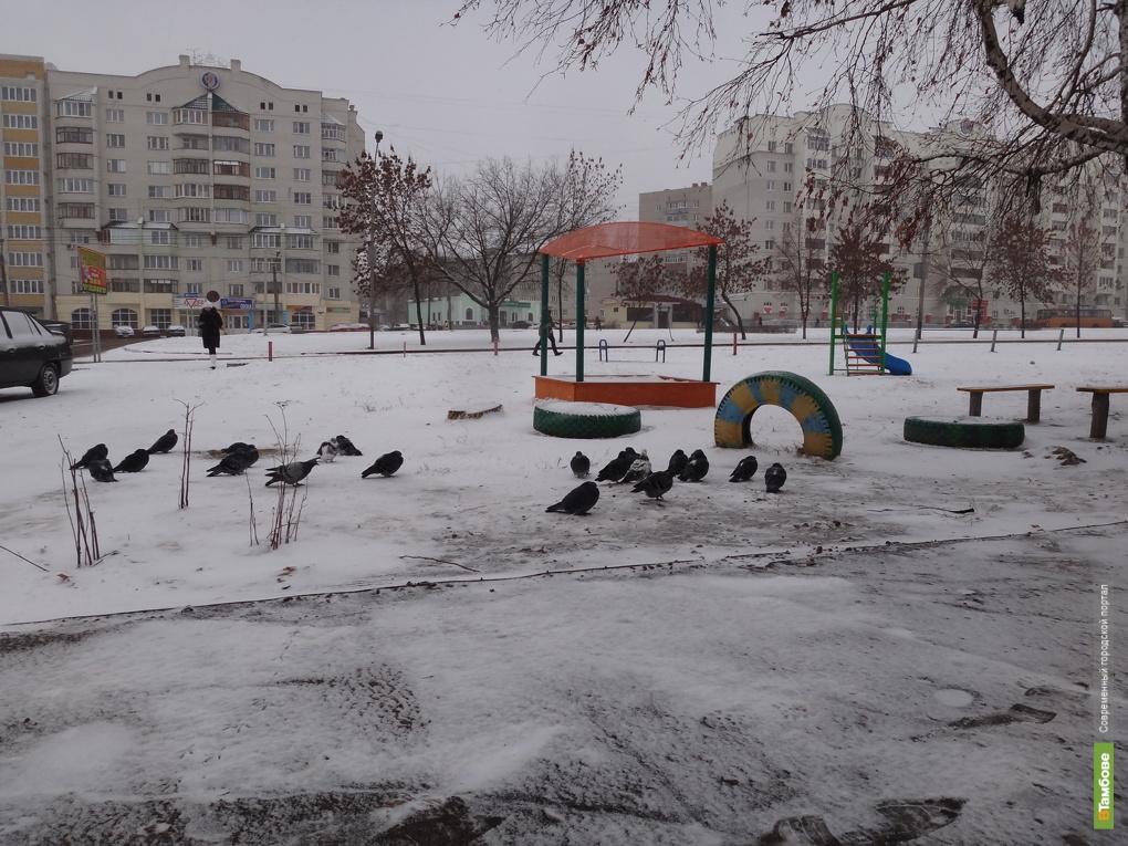 Тамбовские синоптики напугали горожан 30-ти градусными морозами
