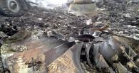 Немецкие детективы дадут $30 млн за сведения о том, кто сбил Boeing под Донецком