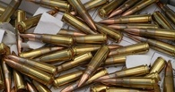 Житель Моршанска задержан за хранение боеприпасов