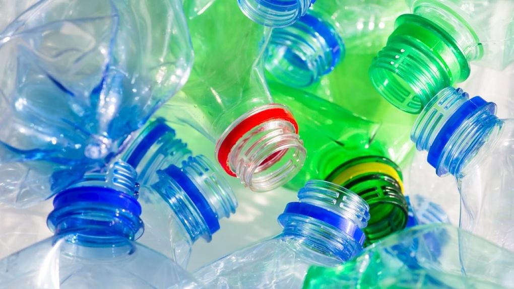 Мидии не так опасны: человек потребляет частицы пластика у себя дома. Исследование учёных
