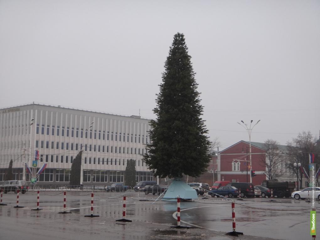 "В центре Тамбова ""выросла"" елка"