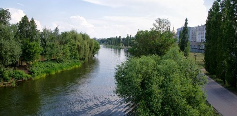 По итогам лета Тамбовщина снова возглавляет список самых экологически чистых регионов