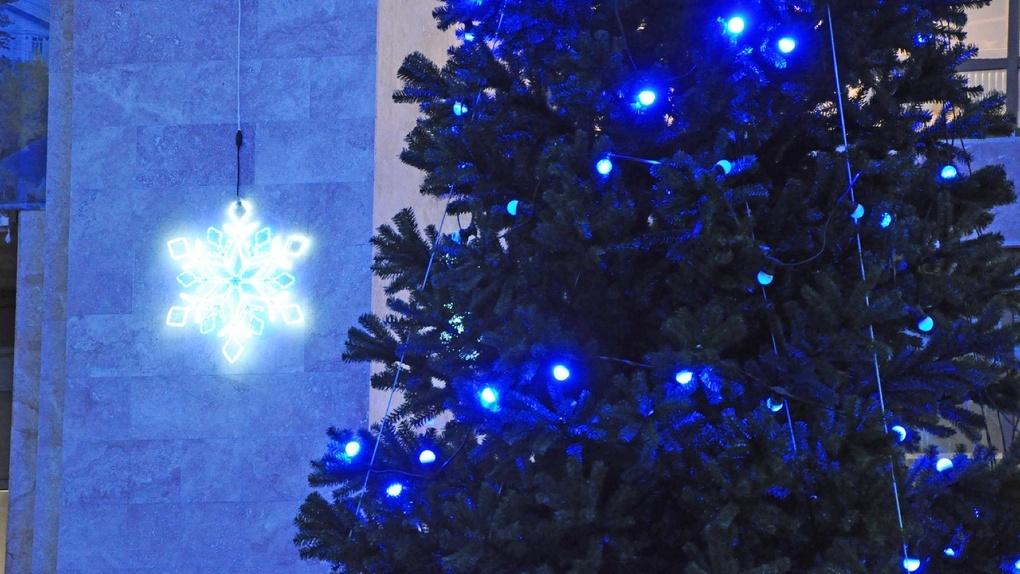 Список мест, где в Тамбове появятся новогодние елки