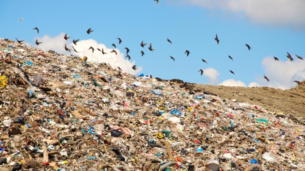 Жители села Беломестная Двойня могут потерять работу, если будут против строительства мусорного полигона