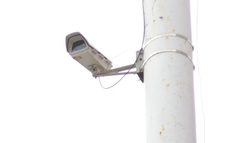 За сутки с помощью камер видеонаблюдения поймали с поличным четверых тамбовчан