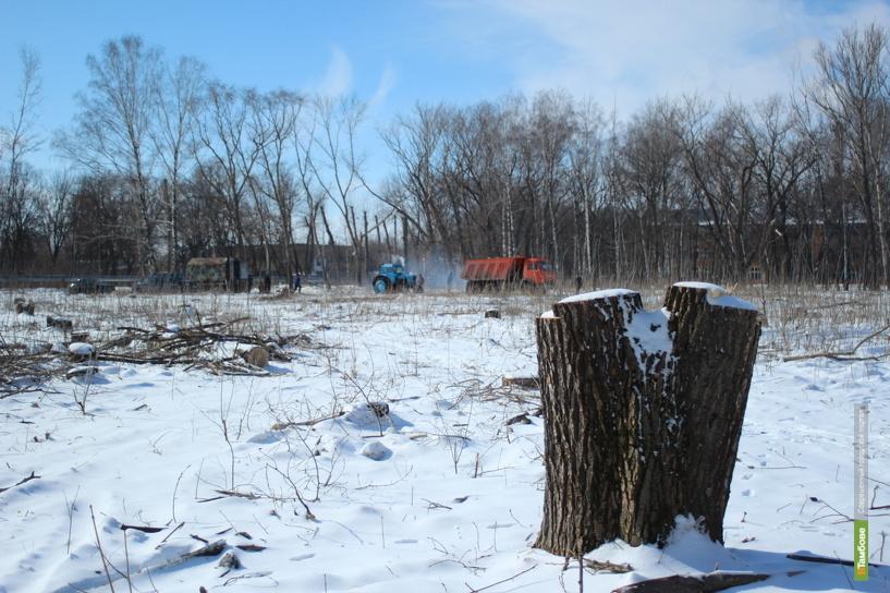 В Тамбове на месте лесопарка построят детский сад