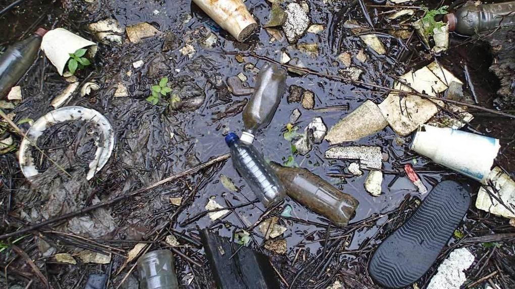 Экологическое бедствие: реке Студенец присвоен максимальный уровень загрязнения