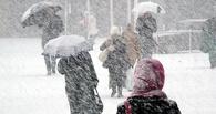 В ближайшие дни в области ожидается снег с дождем