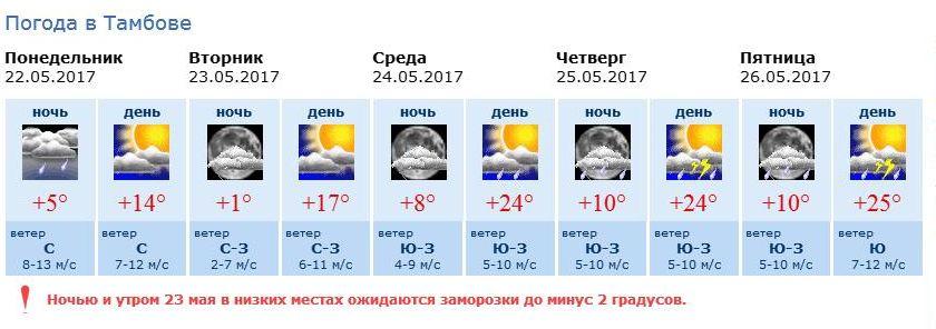 термобелье погода в тамбове на 14 октября этом