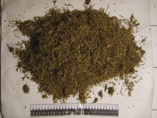 В Мичуринске юные наркоторговцы торговали спайсом