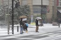 Токио впервые за 13 лет не на шутку засыпало снегом